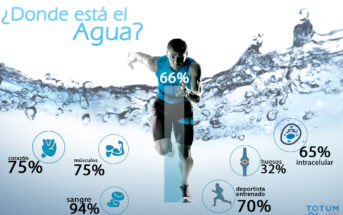 78 electrolitos, porcentaje de agua, calambre, importancia del agua, equilibrio de fluidos